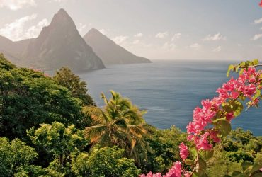 Saint-Lucia-Country-in-the-Caribbean-Mountain-Gros-Piton-and-Petit-Piton-Ocean-red-flowers-green-rainforest-landscape-1920x1080